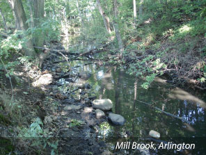 Photo of Mill Brook, Arlington