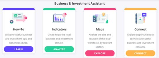 View the Business and Investment Assistant Dashboard